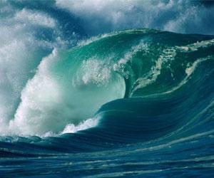 乘风破浪!拥抱数据洪流