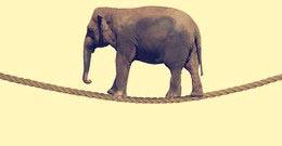 "Dr. Elephant:Hadoop和Spark的优化""神器"""