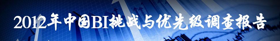 2012年中国BI挑战与优先级调查报告
